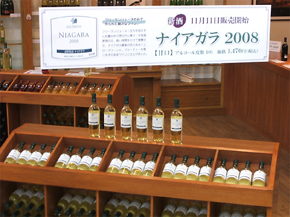photo_08_11_11_01.jpg